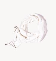 100% 有機棉圍巾